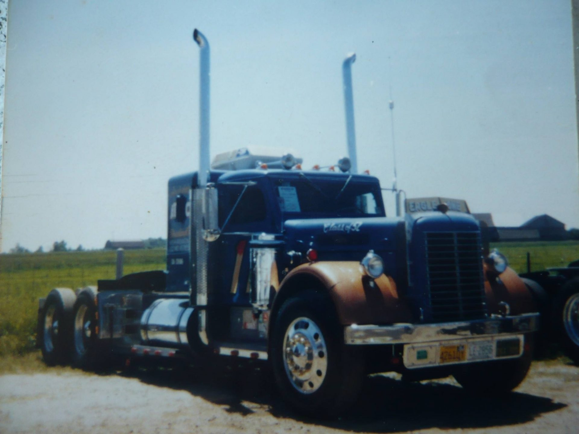 Tennessee Walking Horses - CLOUD 9 WALKERS (Tennessee) Walking tall truck pictures